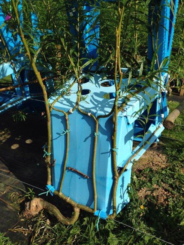 e514034ecf4145819aa9f9d169b85a3f.jpg.700x0_q85_autocrop_crop-smart_upscale