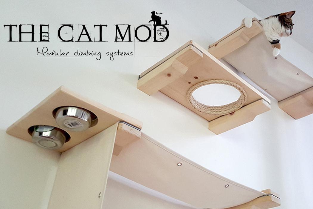 catmod_00